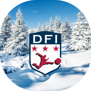 DFI Wintercamp Logo